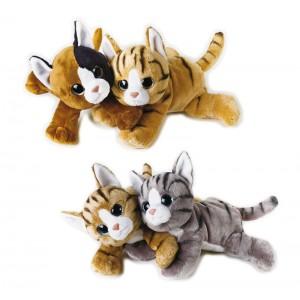 LELLY FURBOTTI CAT