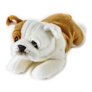 RINGHIO BULL DOG STESO