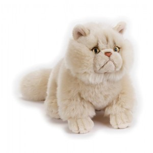 GATTO PERSIANO NGS