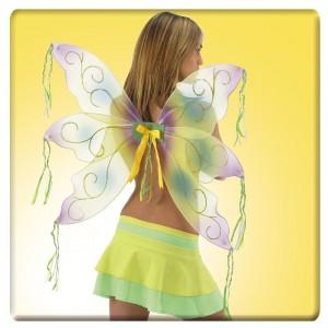 Ali farfalla gialle e viola...