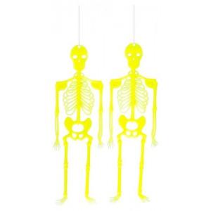 2 scheletrini d'app. G.I.D....