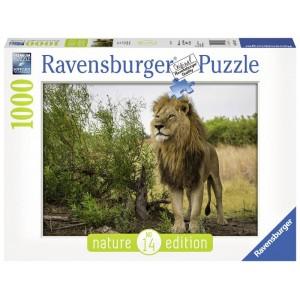 Puzzle 1000 pz Re dei leoni