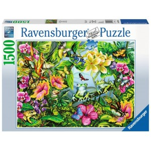 Puzzle 1500 pz Find the Frogs