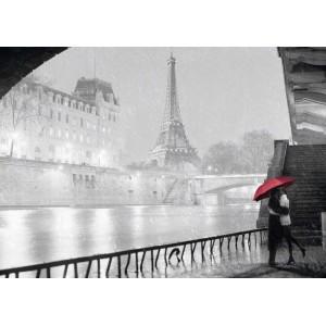 Puzzle 1000 pz Parigi e Senna