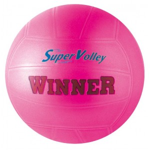 PALLONE VOLLEY WINNER 04306