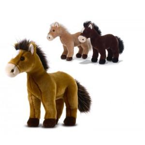 UTAH'S WILD HORSES BREED...